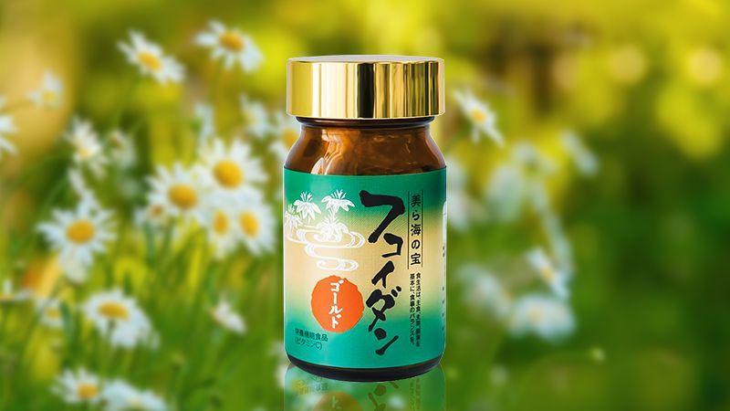 Viên uống hỗ trợ điều trị ung thư Fucoidan Gold Okinawa Ukondo 180 viên