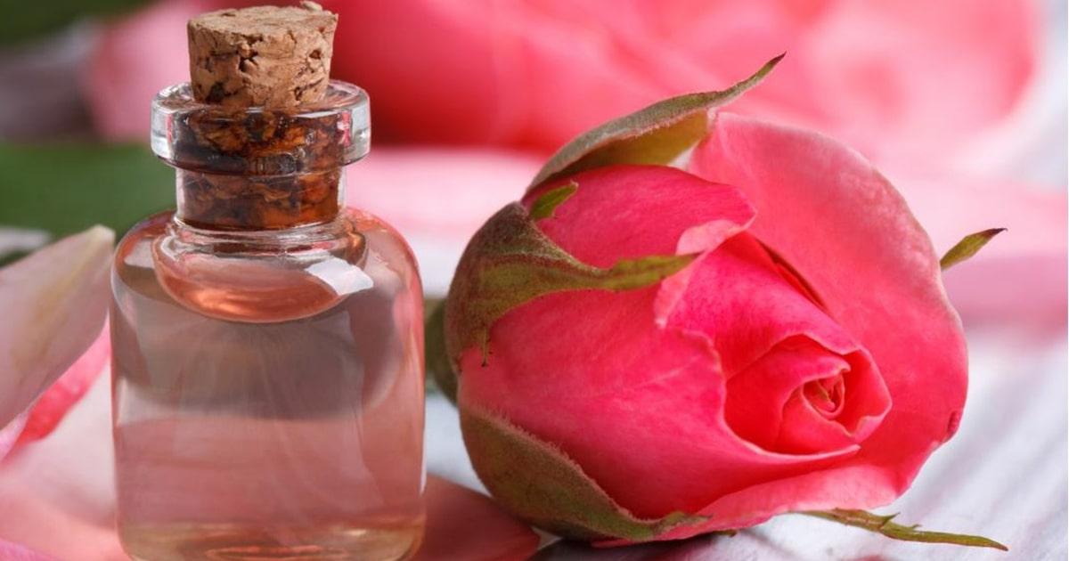 Nước hoa hồng – Ai cũng có nhưng bạn có thật sự hiểu?