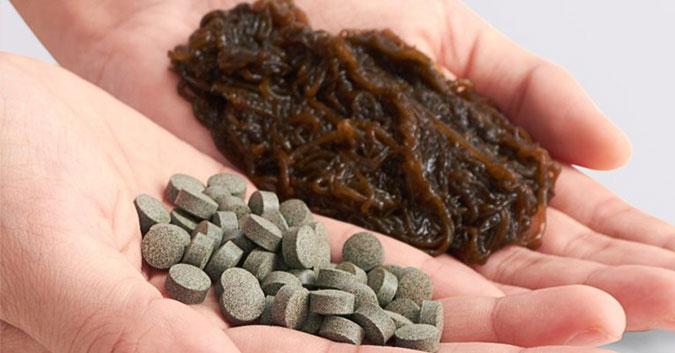 Fucoidan loại nào tốt? 4 tiêu chí nhận biết sản phẩm chất lượng cao