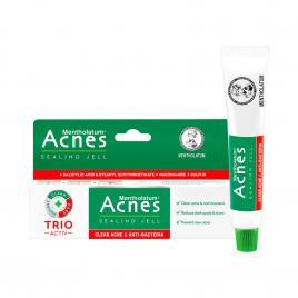 Gel trị mụn và kháng viêm Acnes Sealing Jell 18g